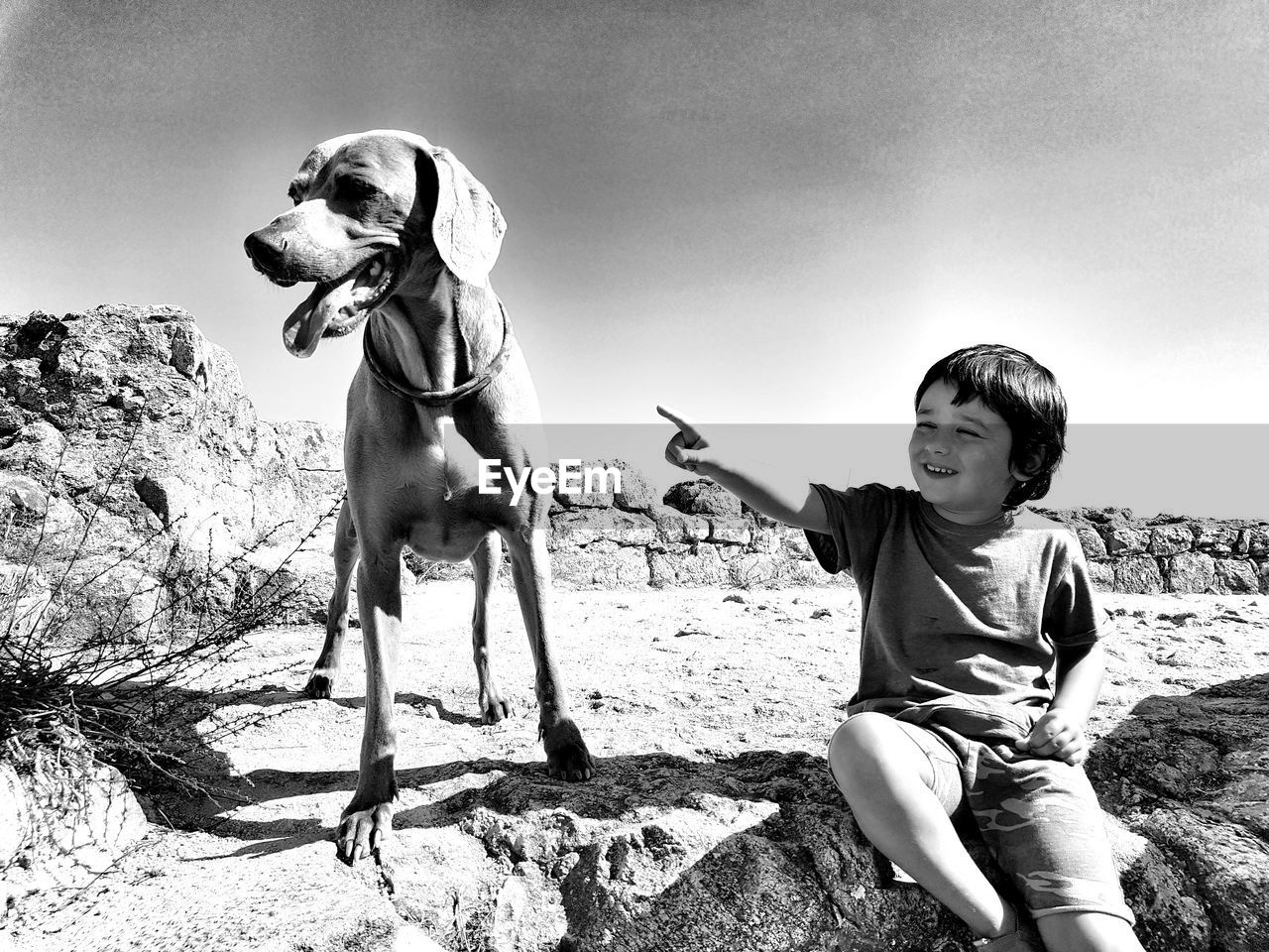 Boy playing with dog while sitting on rock