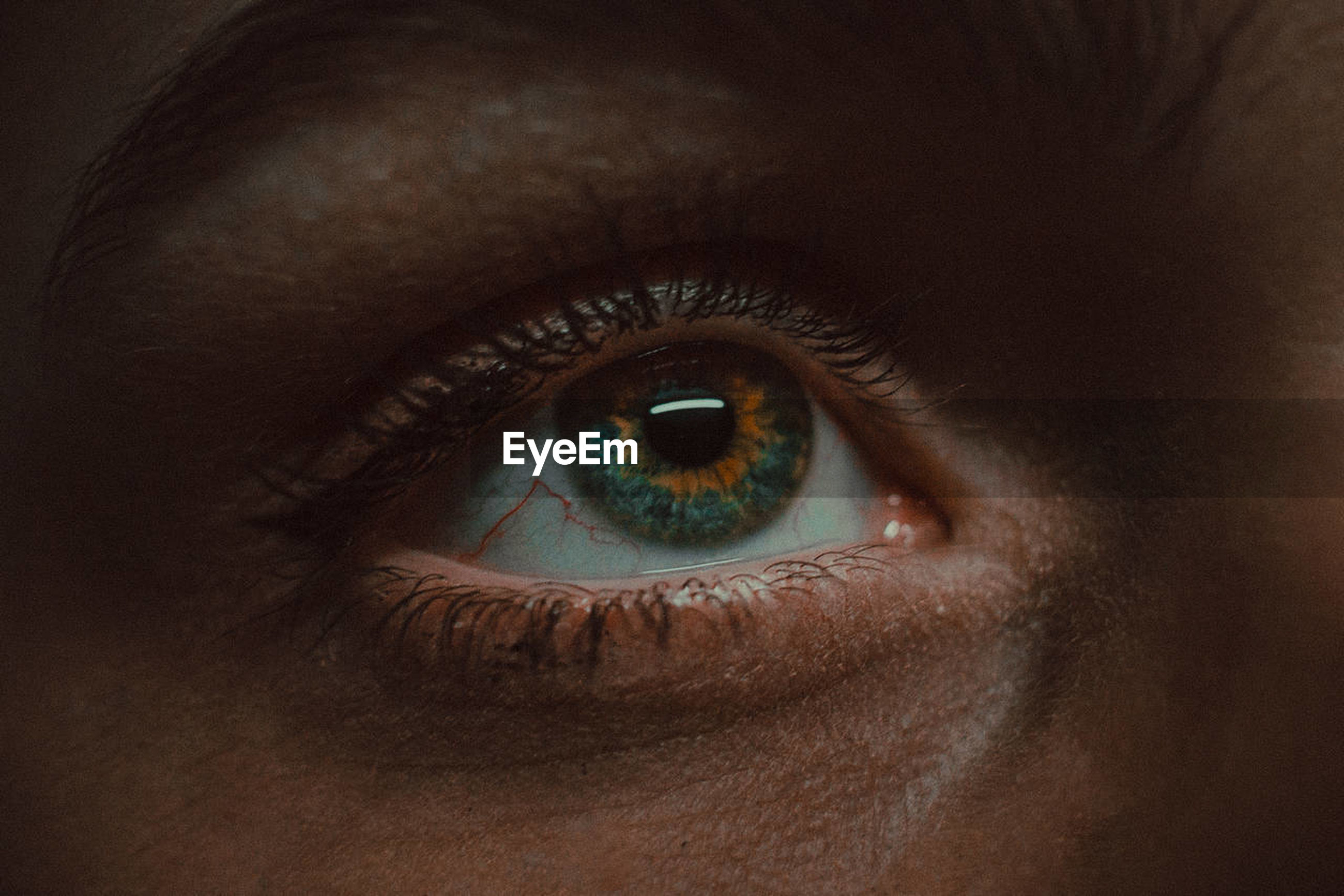 eye, human eye, eyesight, sensory perception, eyelash, body part, human body part, one person, close-up, eyeball, iris - eye, real people, looking at camera, portrait, extreme close-up, eyebrow, human face, adult, human skin, eyelid