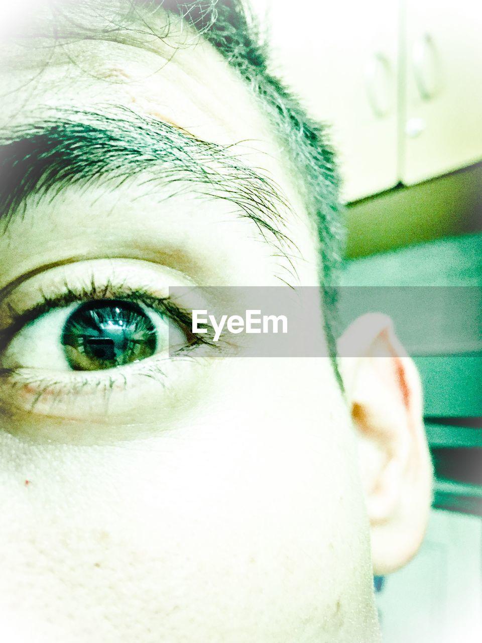 human eye, real people, one person, human body part, close-up, looking at camera, indoors, human face, day, eyeball, portrait, eyebrow, eyesight, eyelash, human hand, people