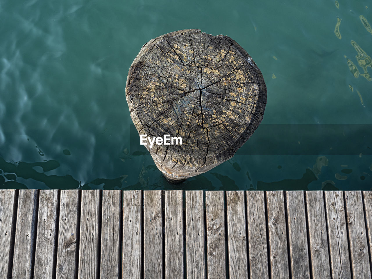 Wood mooring pole viewed from the top
