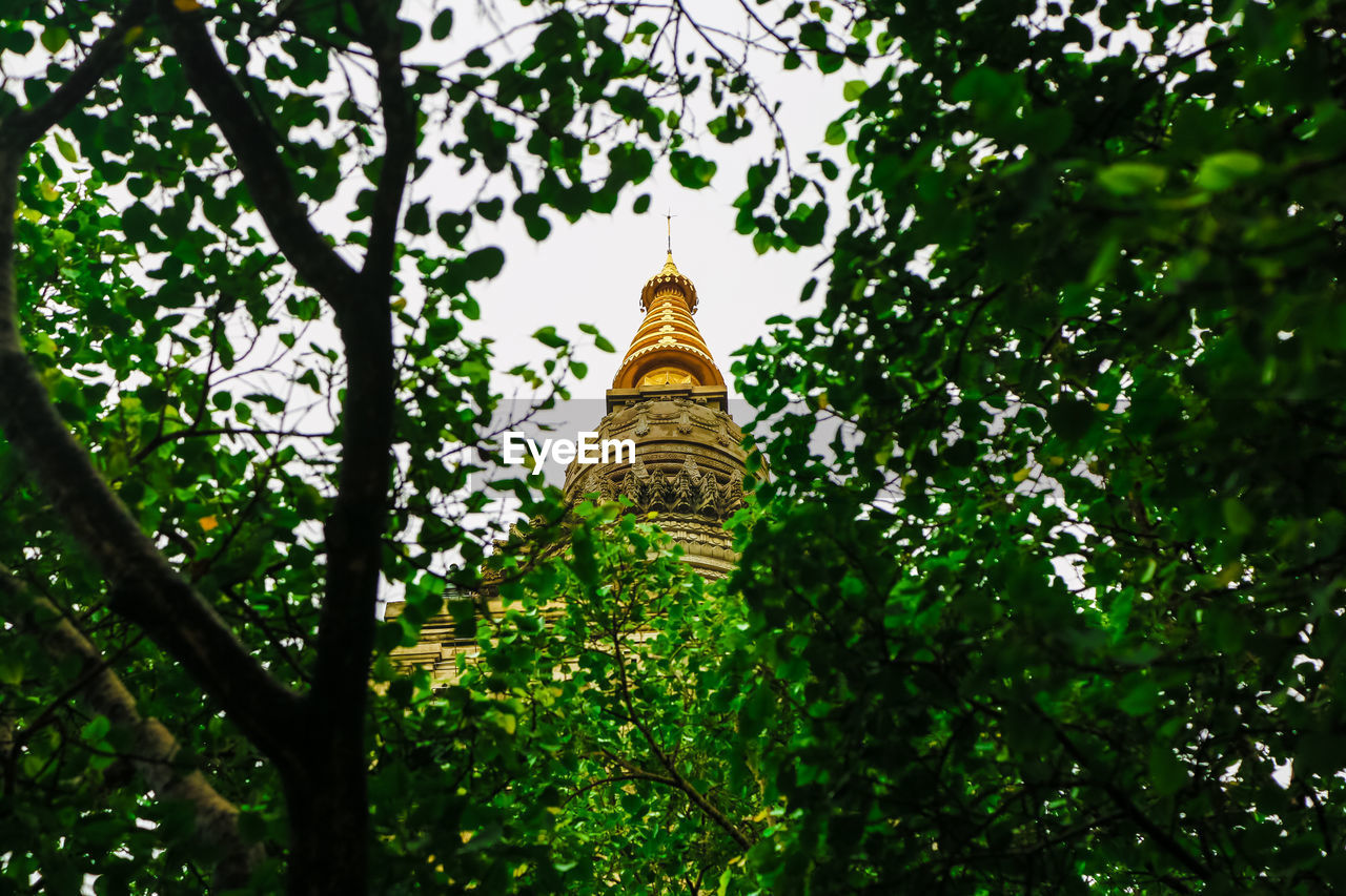 LOW ANGLE VIEW OF TREES AND TEMPLE AGAINST SKY