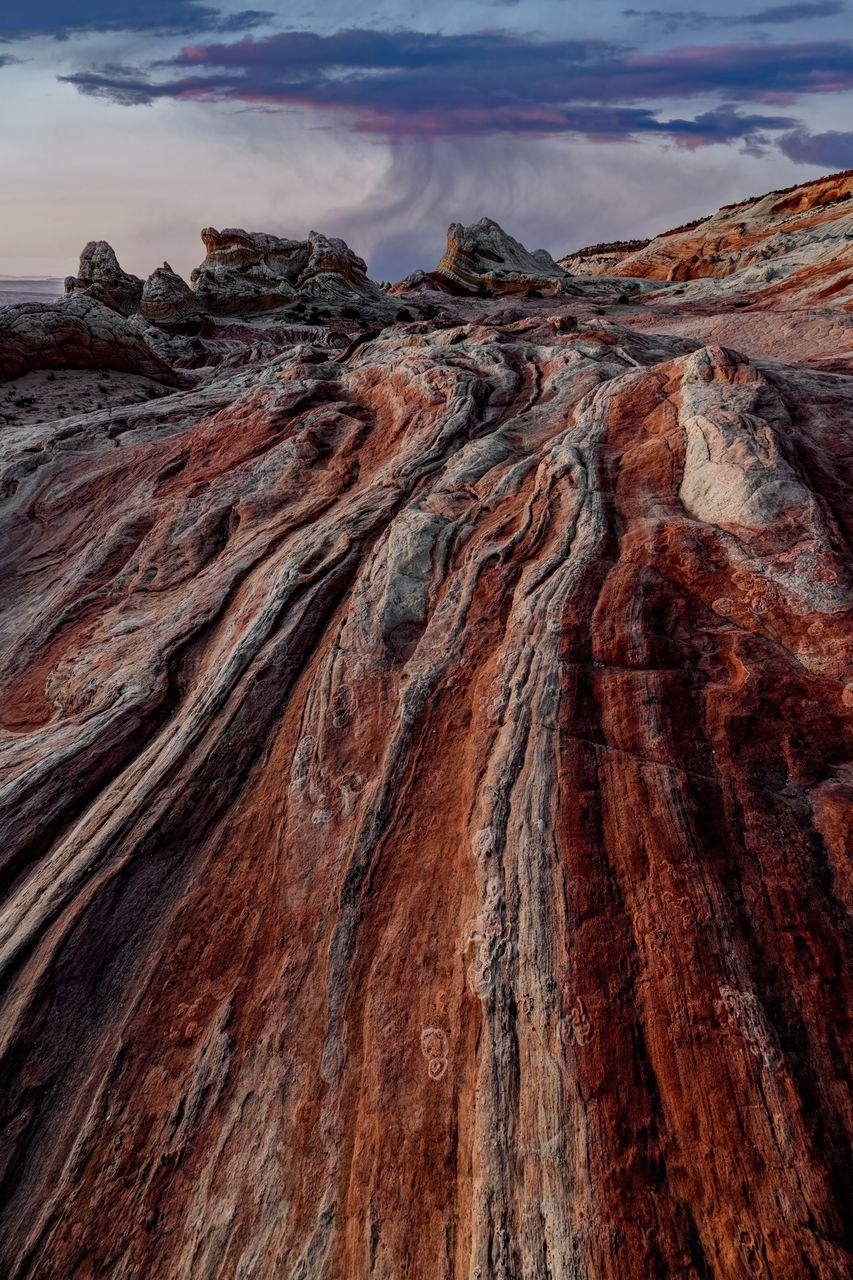 Leather landscape iii