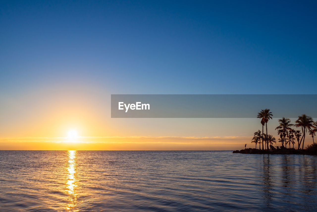 sky, water, sunset, beauty in nature, scenics - nature, sea, tranquil scene, tranquility, palm tree, tropical climate, horizon, tree, reflection, idyllic, nature, sun, no people, horizon over water, waterfront, outdoors, swimming pool, coconut palm tree