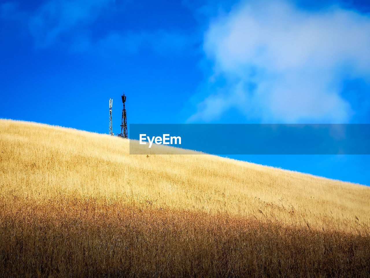 sky, land, field, cloud - sky, blue, nature, landscape, plant, day, scenics - nature, environment, beauty in nature, no people, tranquil scene, horizon, outdoors, horizon over land, rural scene, tranquility, growth