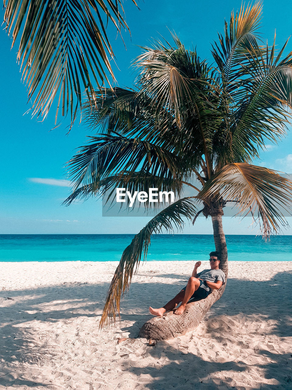 Man Resting On Palm Tree At Beach Against Sky
