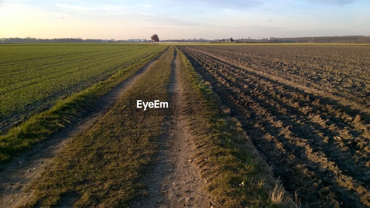 Dirt Road Passing Through Field