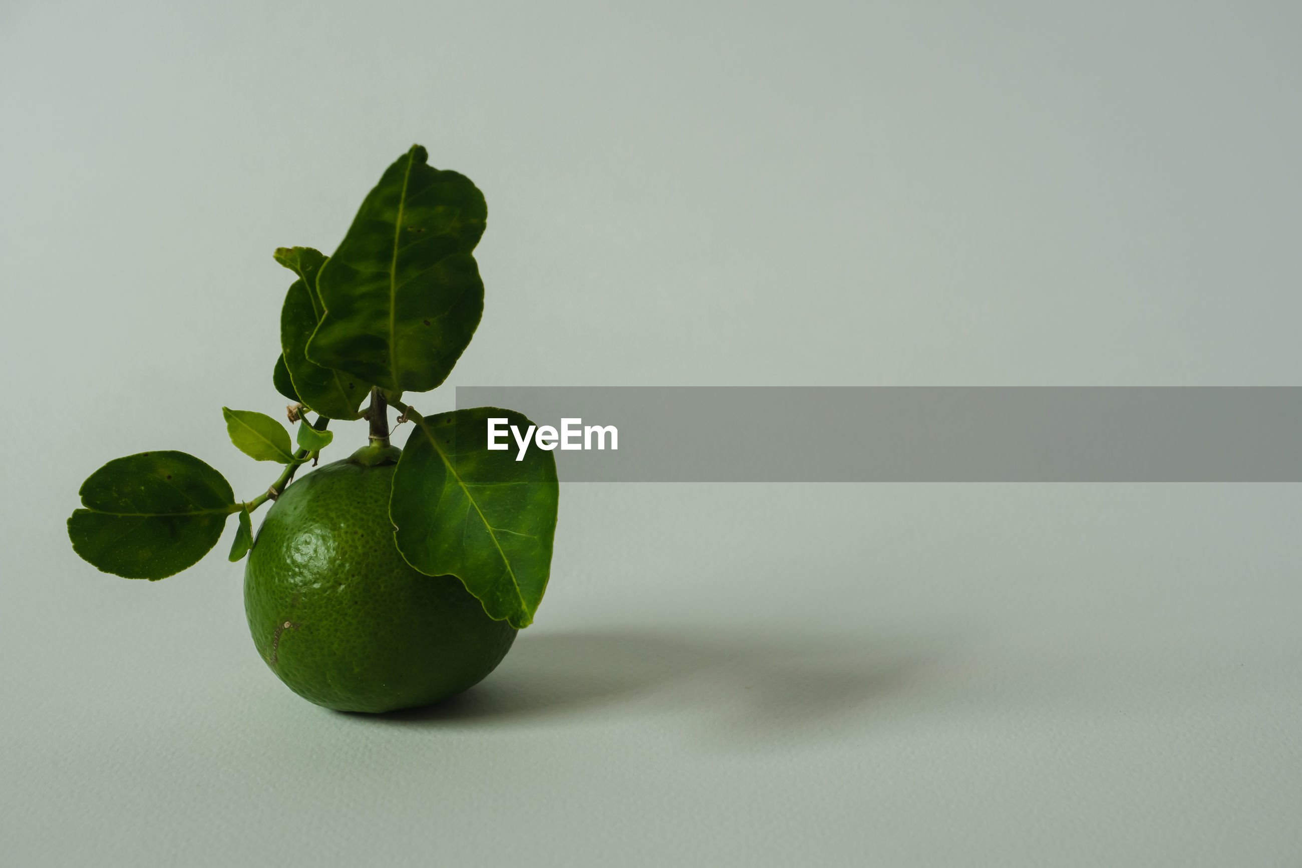 CLOSE-UP OF GREEN FRUIT ON WHITE BACKGROUND