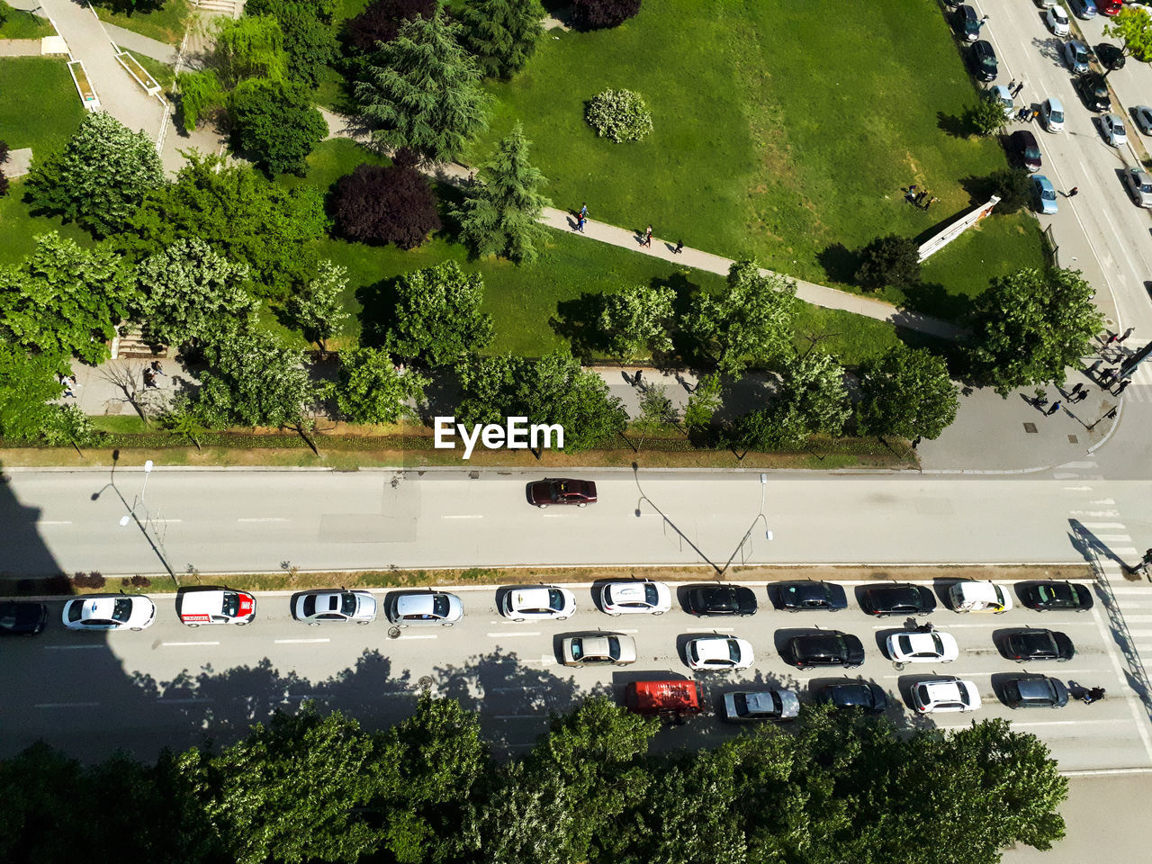 HIGH ANGLE VIEW OF CARS ON ROAD BY TREES