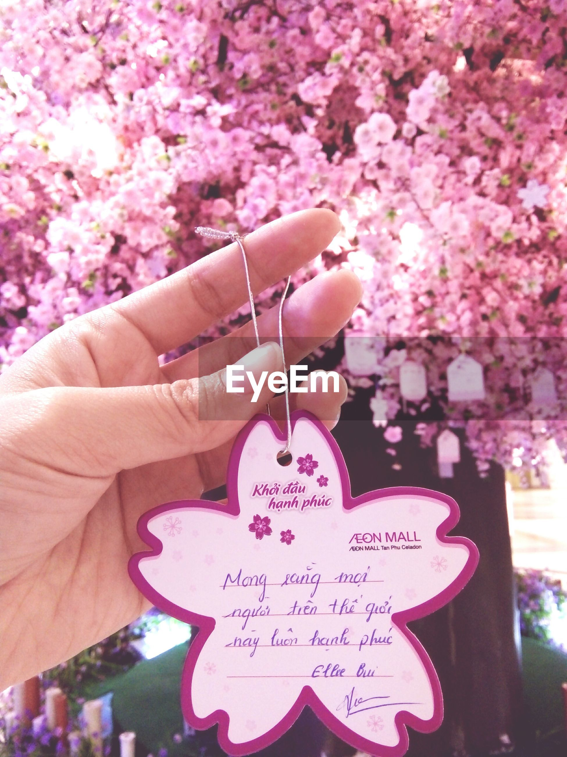 love, human hand, text, flower, postcard, people, outdoors, day, one person, adults only, adult, human body part