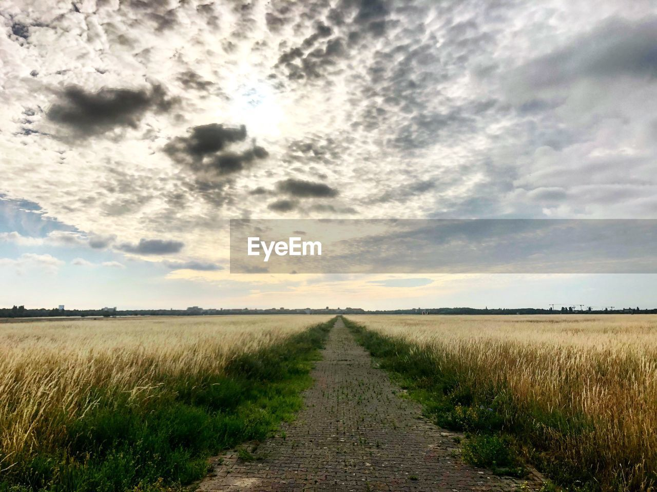 sky, cloud - sky, landscape, land, the way forward, tranquility, field, environment, tranquil scene, direction, grass, beauty in nature, nature, scenics - nature, plant, no people, road, vanishing point, rural scene, diminishing perspective, outdoors, long