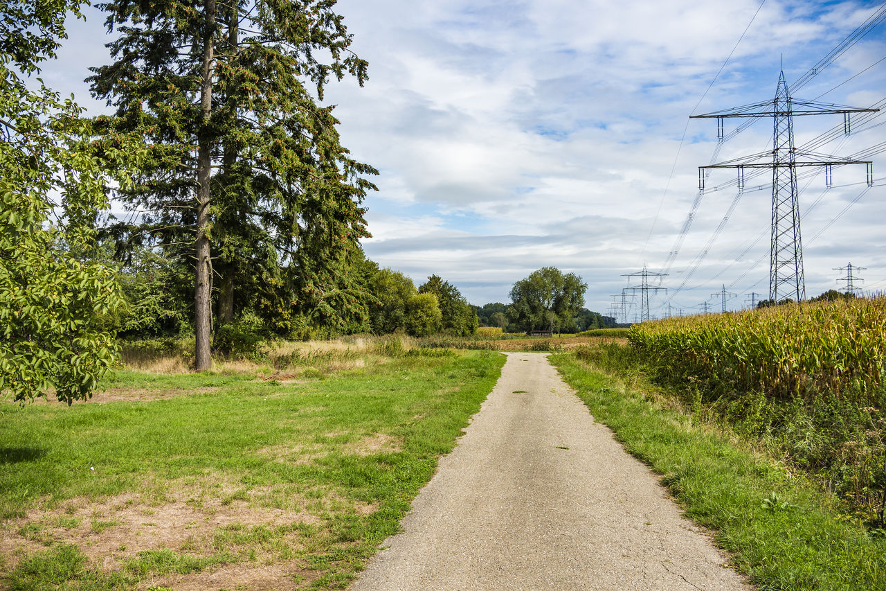 plant, tree, sky, the way forward, direction, road, transportation, nature, growth, cloud - sky, land, green color, no people, scenics - nature, grass, landscape, electricity, connection, beauty in nature, tranquility, diminishing perspective, outdoors, power supply