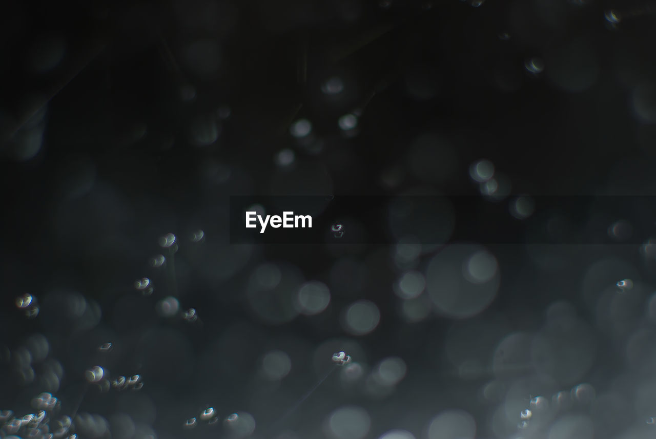 defocused, backgrounds, drop, full frame, no people, water, nature, close-up, beauty in nature, indoors, night, freshness