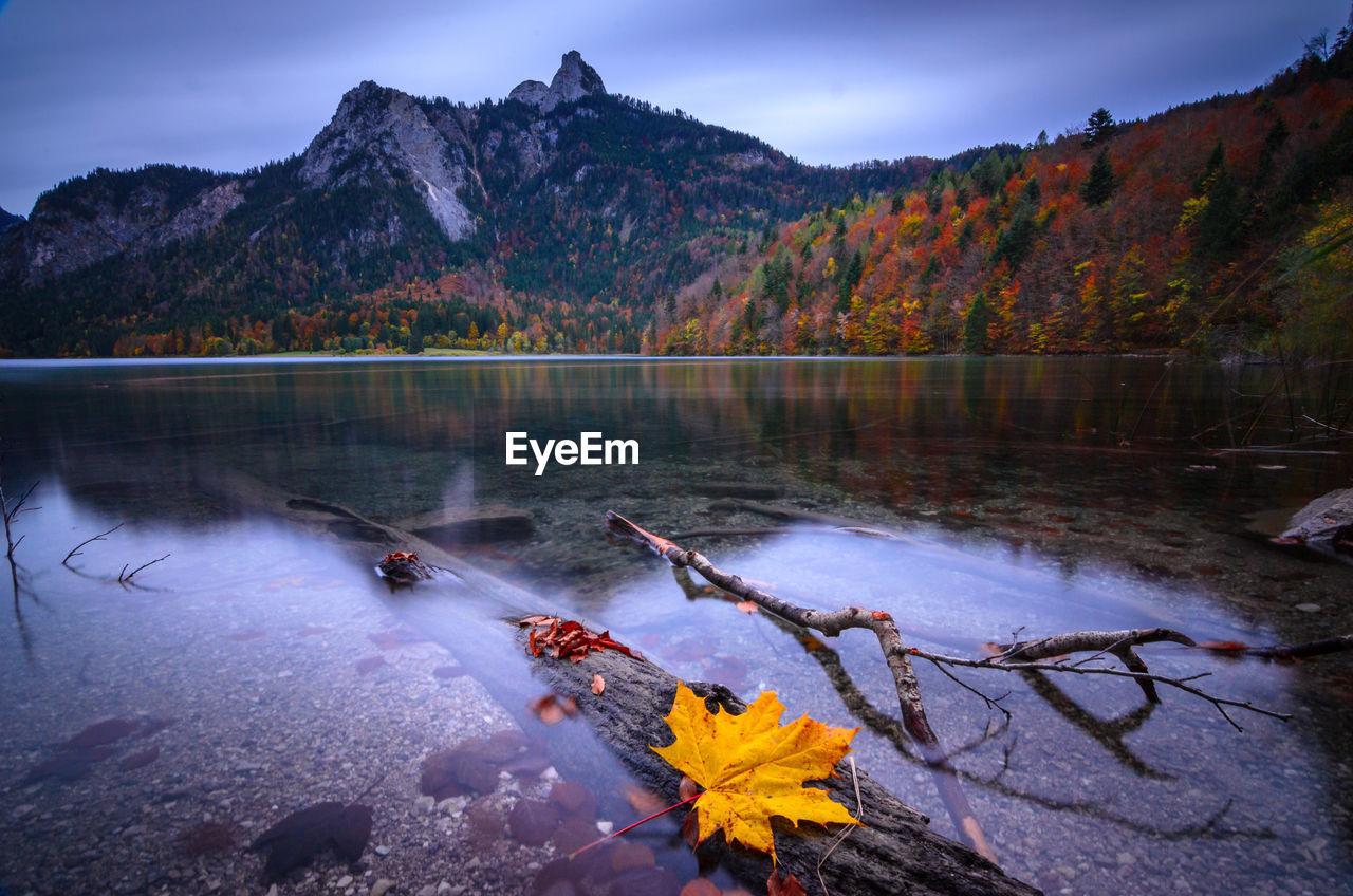 Autumn on an alp lake