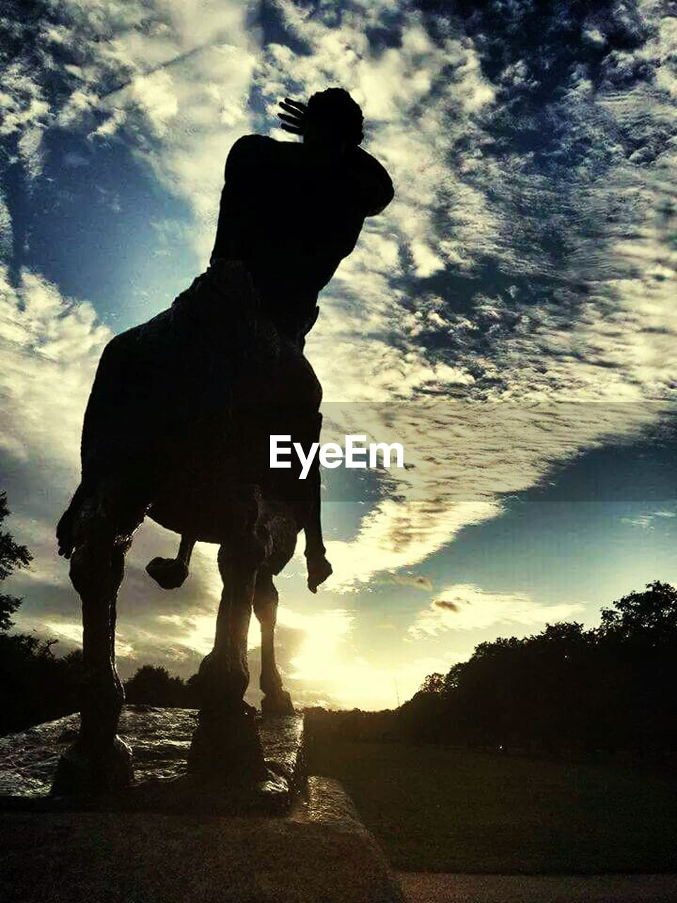 silhouette, sky, sunset, cloud - sky, outdoors, nature, one animal, domestic animals, low angle view, animal themes, mammal, tree, full length, beauty in nature, one person, day, people