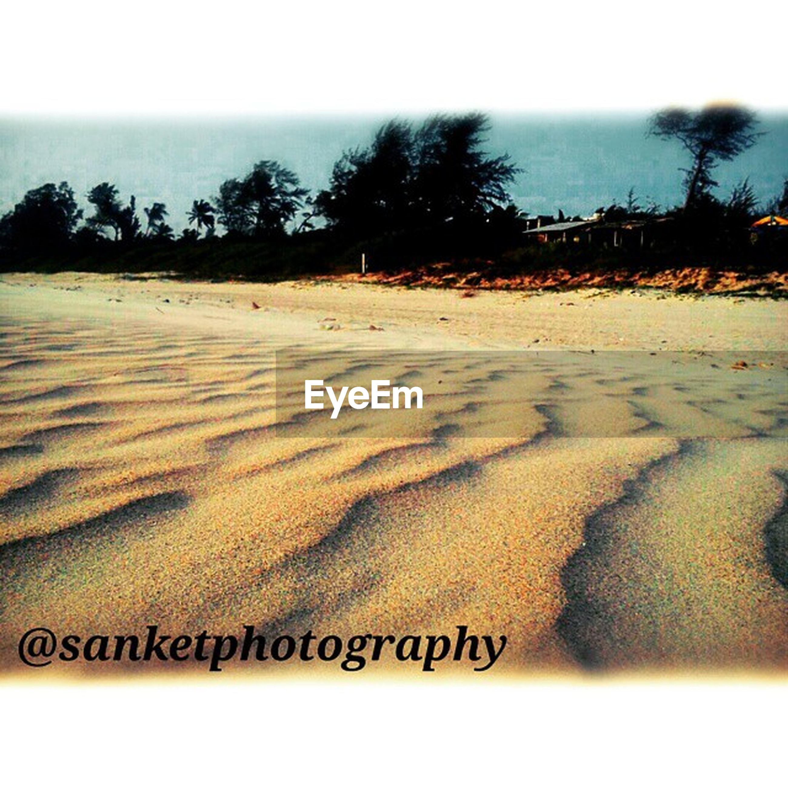 beach, sea, sand, shore, water, horizon over water, tranquility, wave, tranquil scene, scenics, transfer print, nature, beauty in nature, auto post production filter, sky, surf, text, coastline, western script, idyllic