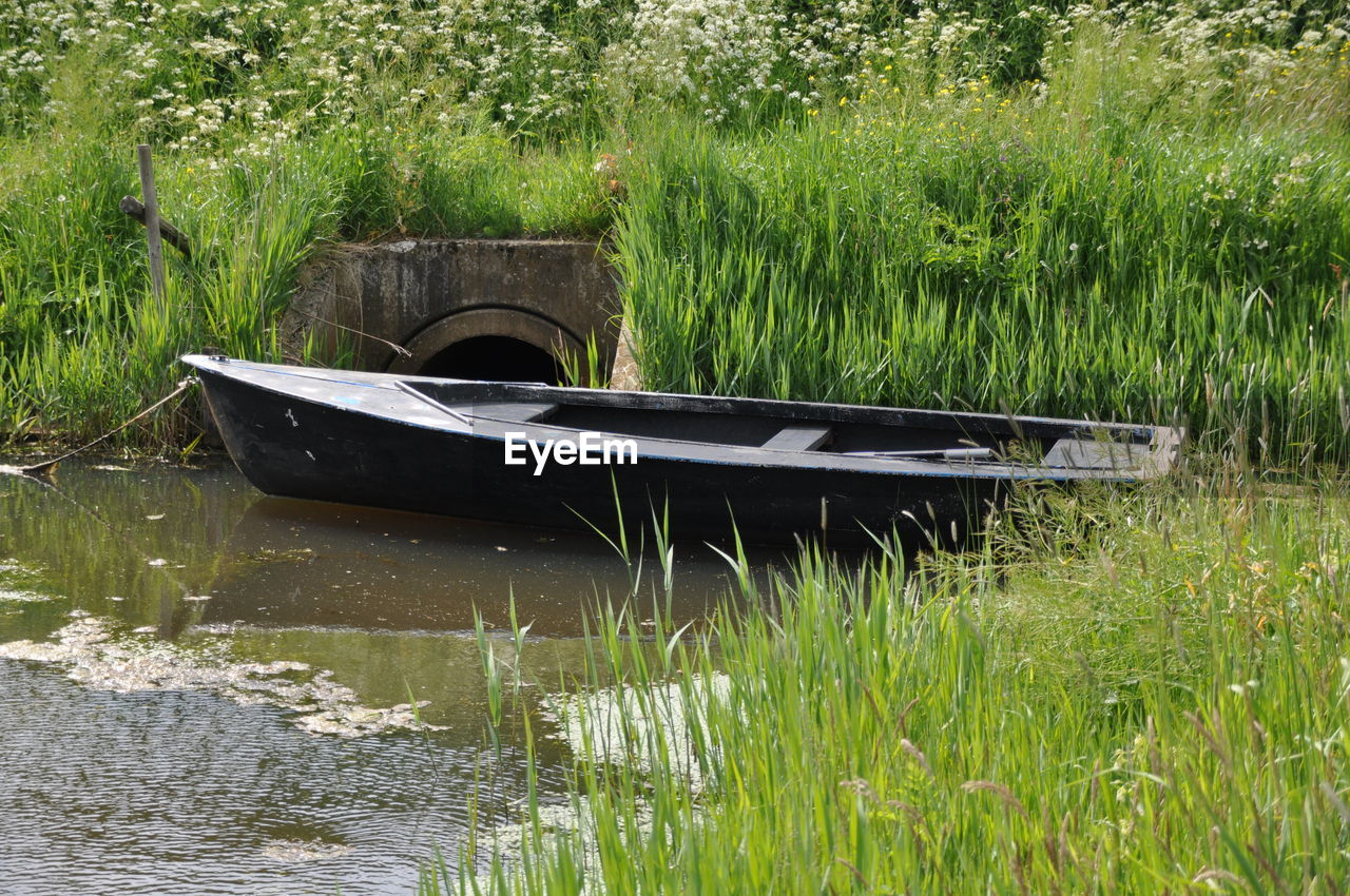 water, plant, nautical vessel, grass, transportation, nature, day, mode of transportation, no people, green color, moored, growth, tranquility, lake, outdoors, rowboat, abandoned, land, beauty in nature