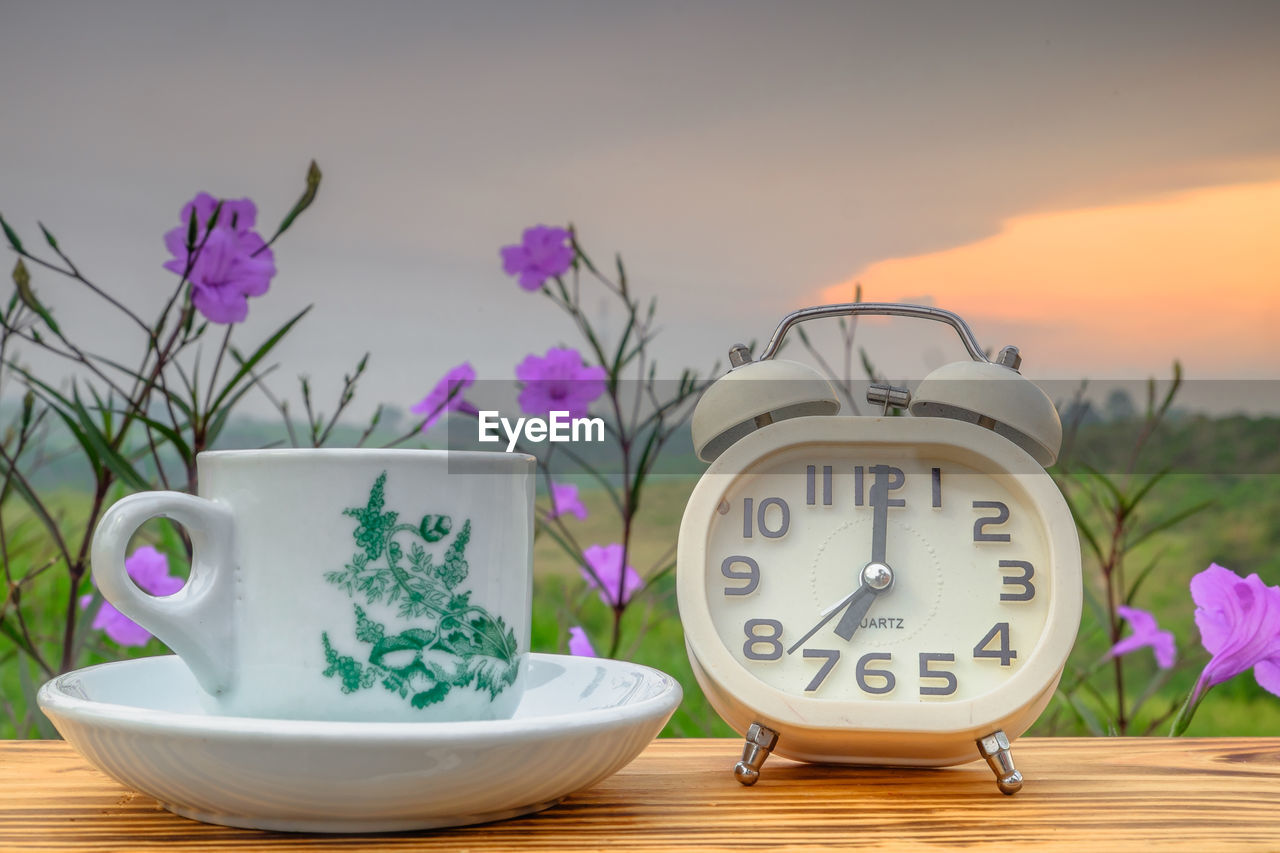 plant, table, no people, nature, flower, flowering plant, beauty in nature, close-up, focus on foreground, freshness, pink color, still life, cup, clock, indoors, potted plant, vase, communication, alarm clock, purple, floral pattern