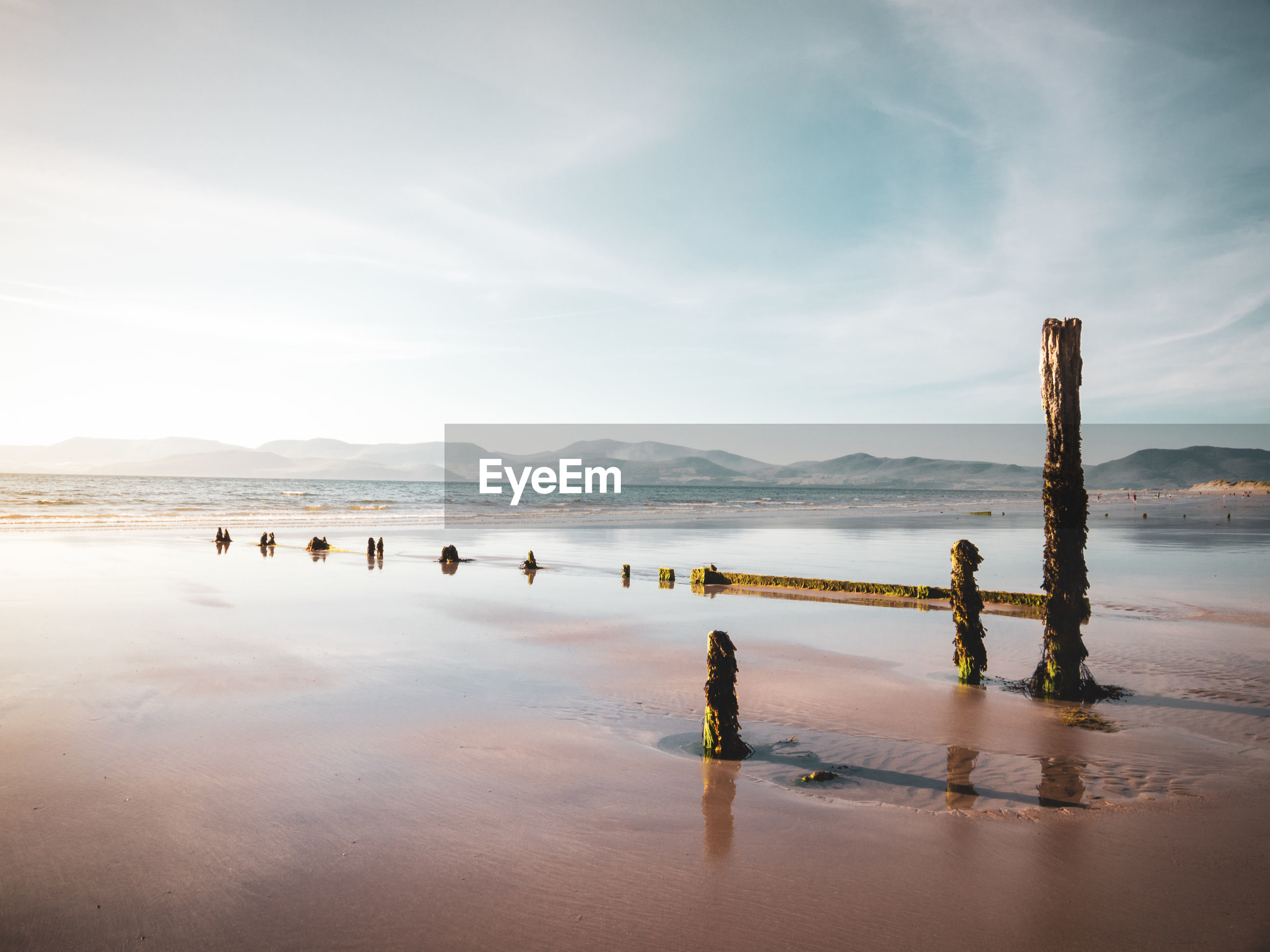 Scenic view of wooden posts on a beach against sky
