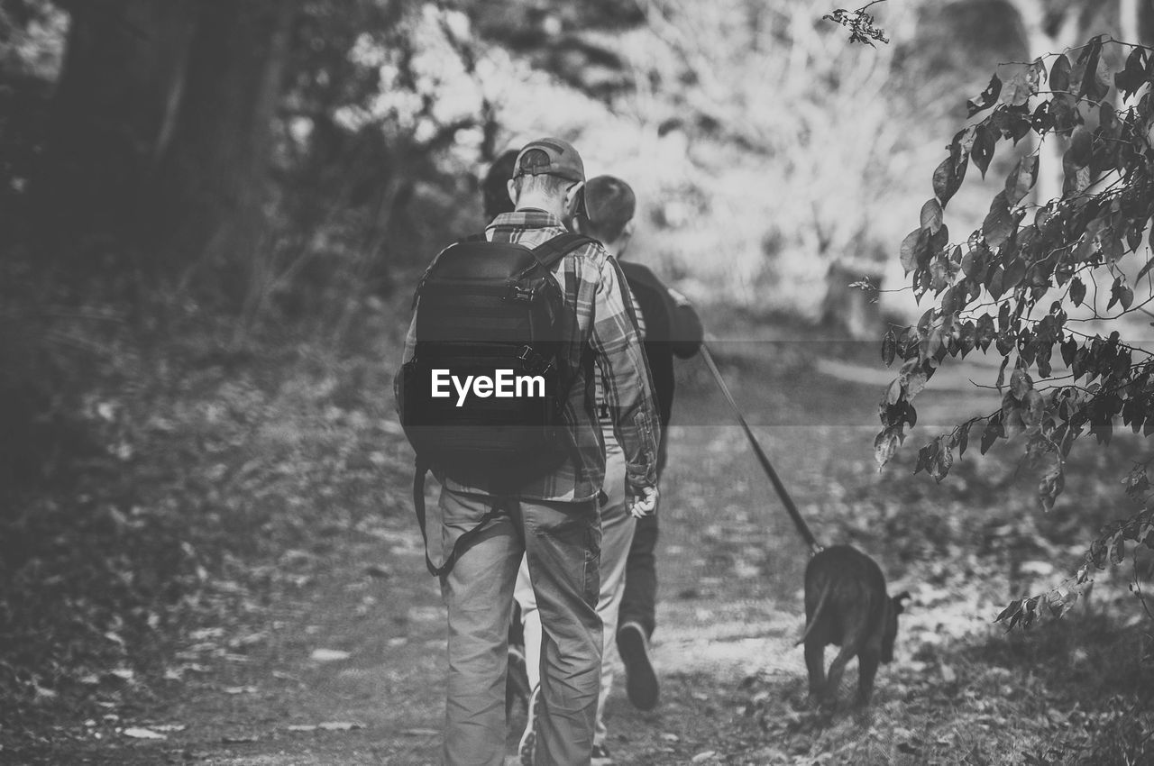 Rear View Of People With Dog Walking In Forest