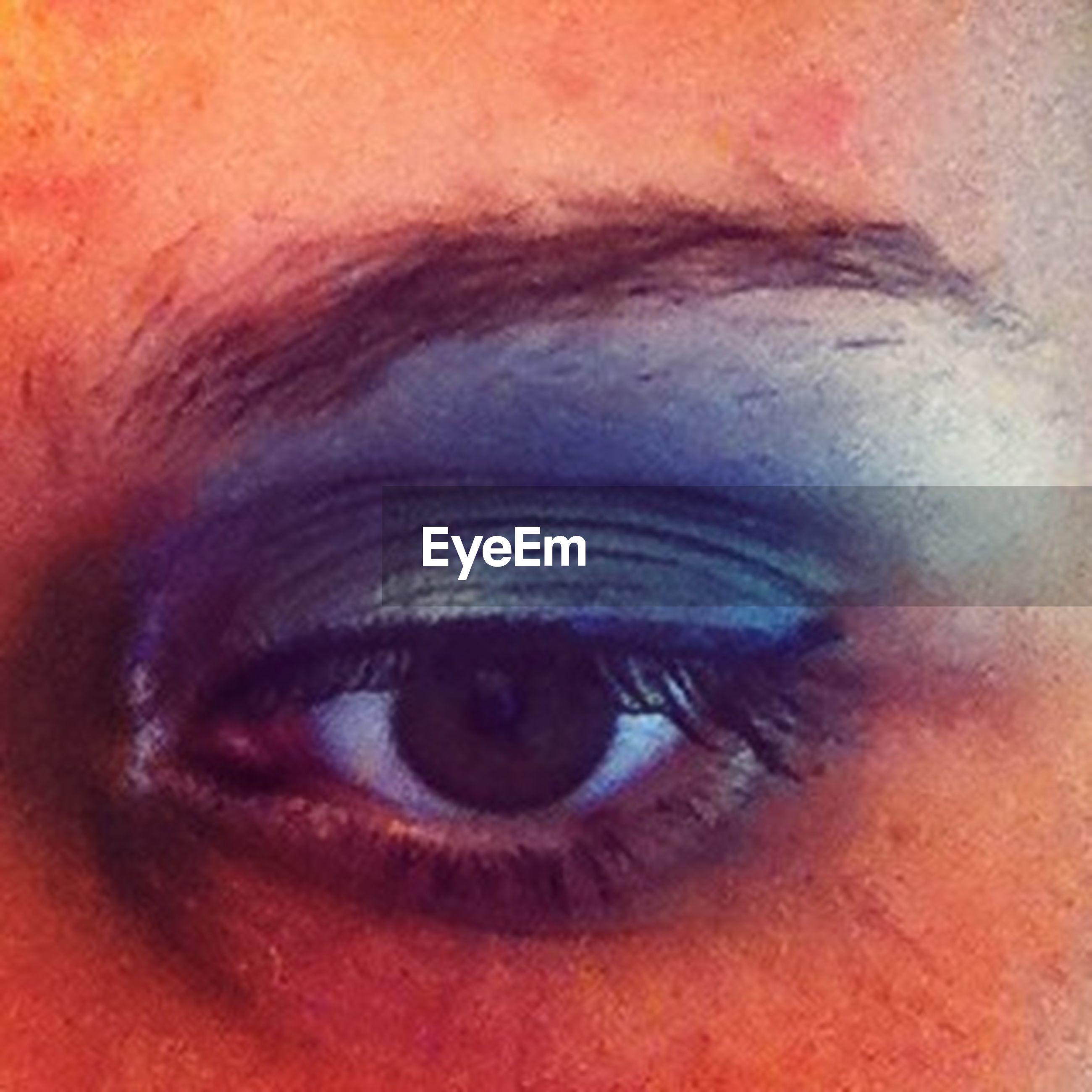 human eye, close-up, eyelash, eyesight, part of, human face, looking at camera, portrait, headshot, lifestyles, human skin, sensory perception, extreme close-up, eyeball, extreme close up, eyebrow, iris - eye