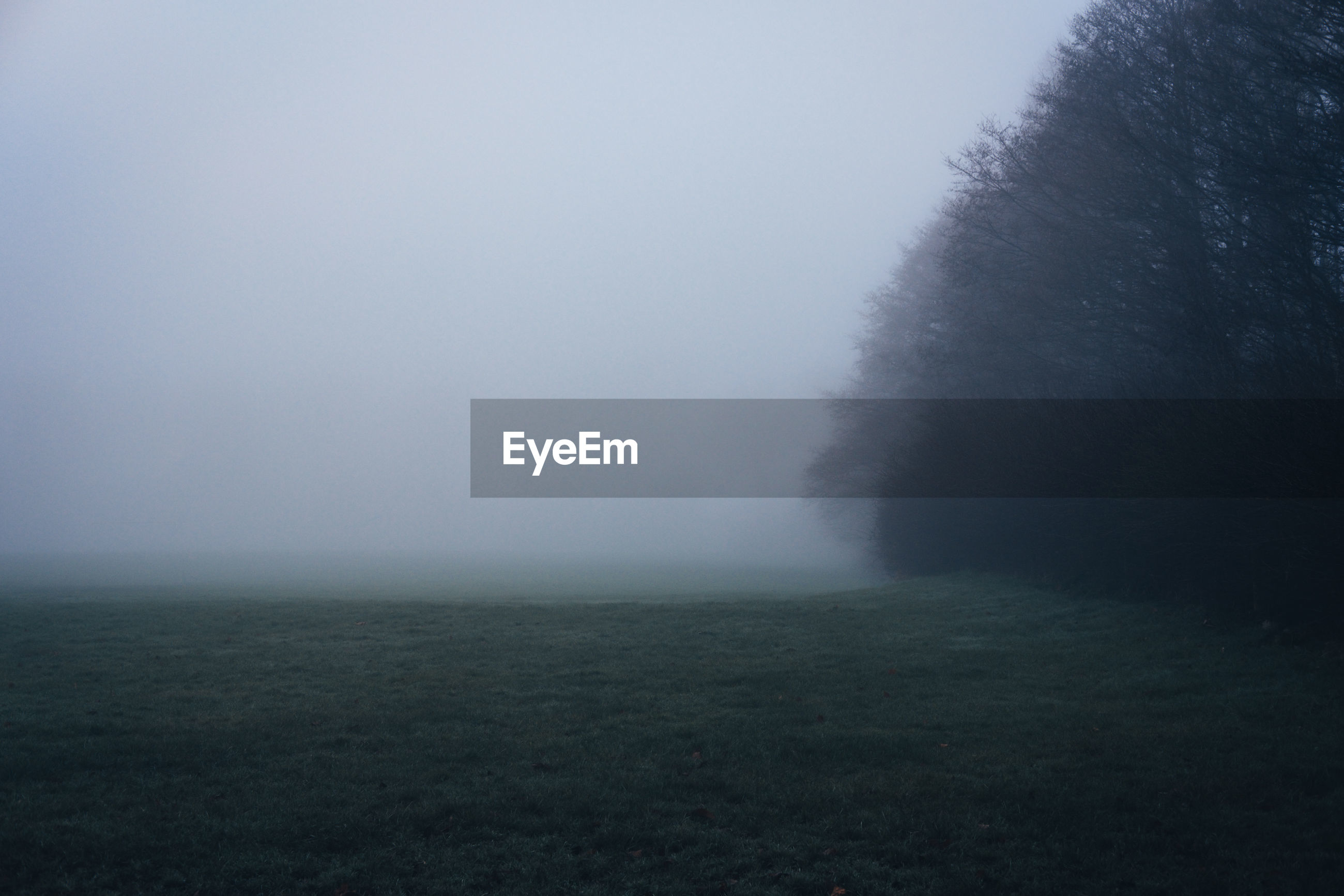 SCENIC VIEW OF FOGGY FIELD AGAINST SKY