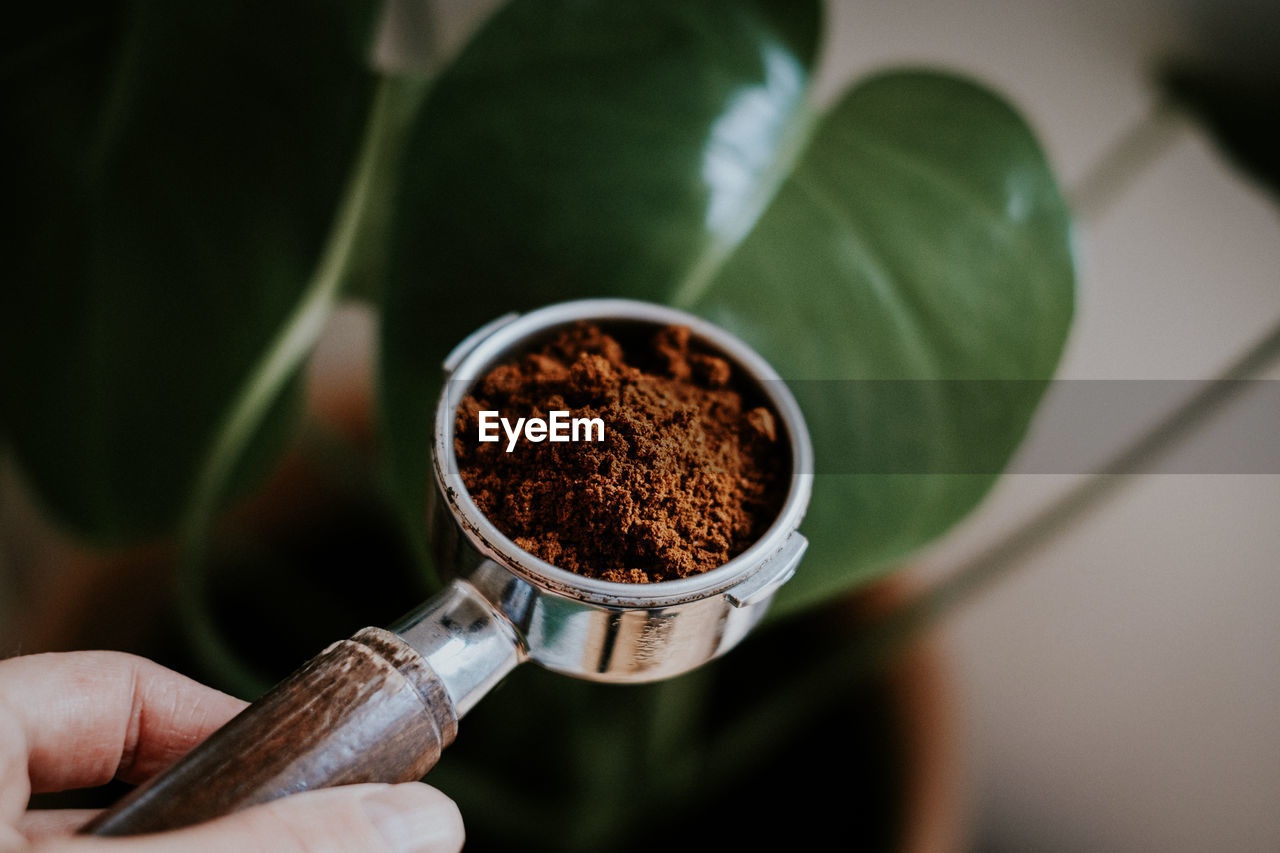 Close-Up Of Person Holding Pota Filter
