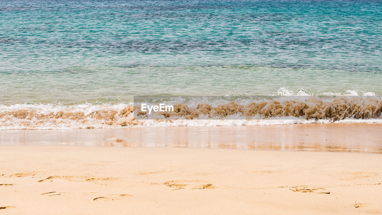 land, water, beach, sea, sand, beauty in nature, scenics - nature, tranquility, no people, nature, day, motion, wave, sport, tranquil scene, outdoors, idyllic, remote, non-urban scene
