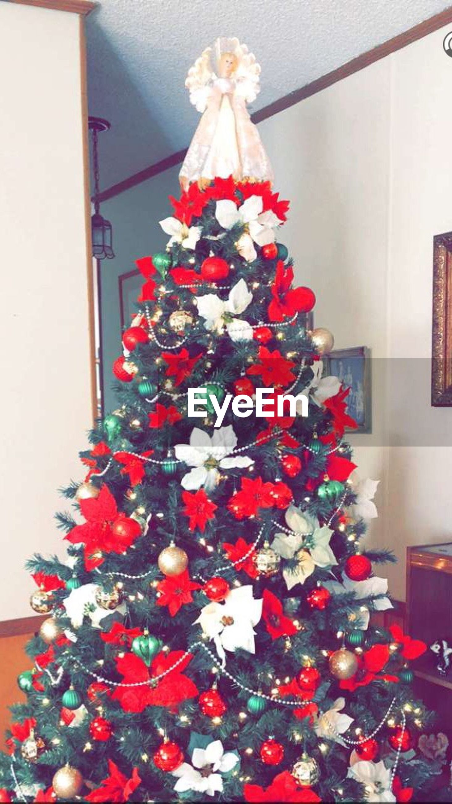 decoration, flower, indoors, hanging, celebration, christmas, home interior, low angle view, christmas decoration, decor, lighting equipment, red, multi colored, fragility, built structure, no people, illuminated, tradition, architecture, christmas tree