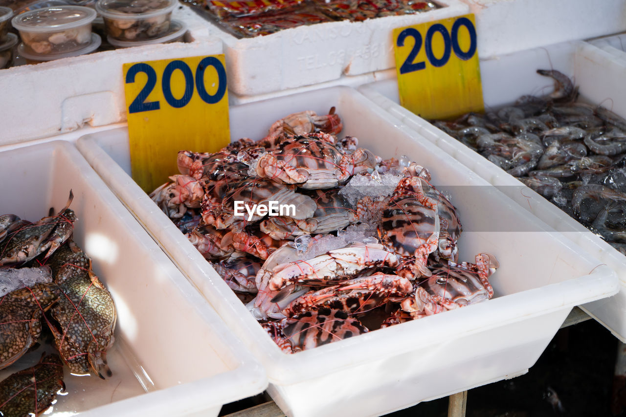 VIEW OF FISH FOR SALE AT MARKET