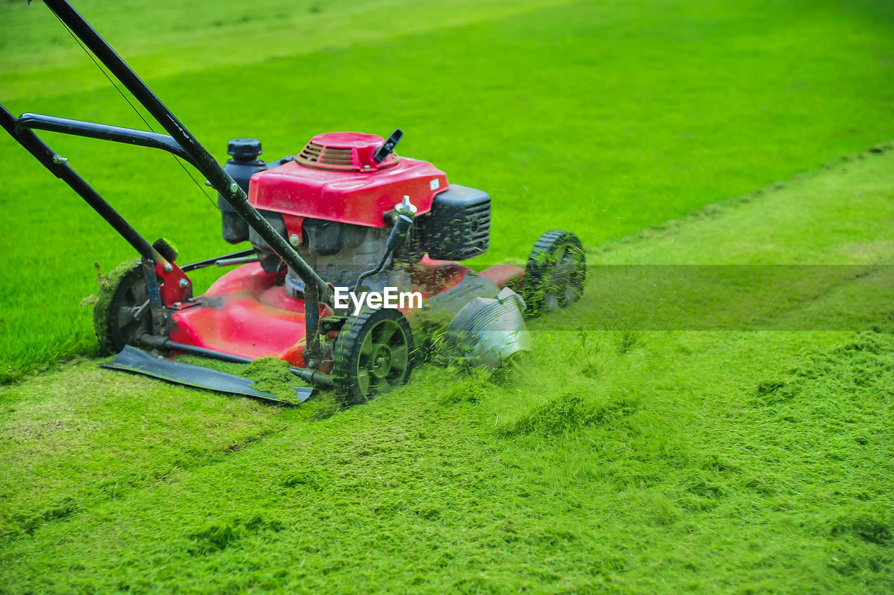 green color, grass, plant, field, land, nature, growth, transportation, day, agricultural equipment, agricultural machinery, agriculture, landscape, gardening, mode of transportation, tractor, machinery, rural scene, land vehicle, outdoors, no people