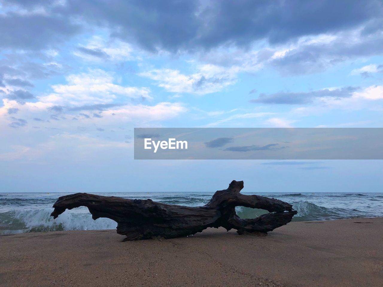 sea, sky, water, beach, land, cloud - sky, horizon over water, scenics - nature, horizon, beauty in nature, tranquility, tranquil scene, nature, driftwood, day, no people, sand, non-urban scene, idyllic, wood, outdoors