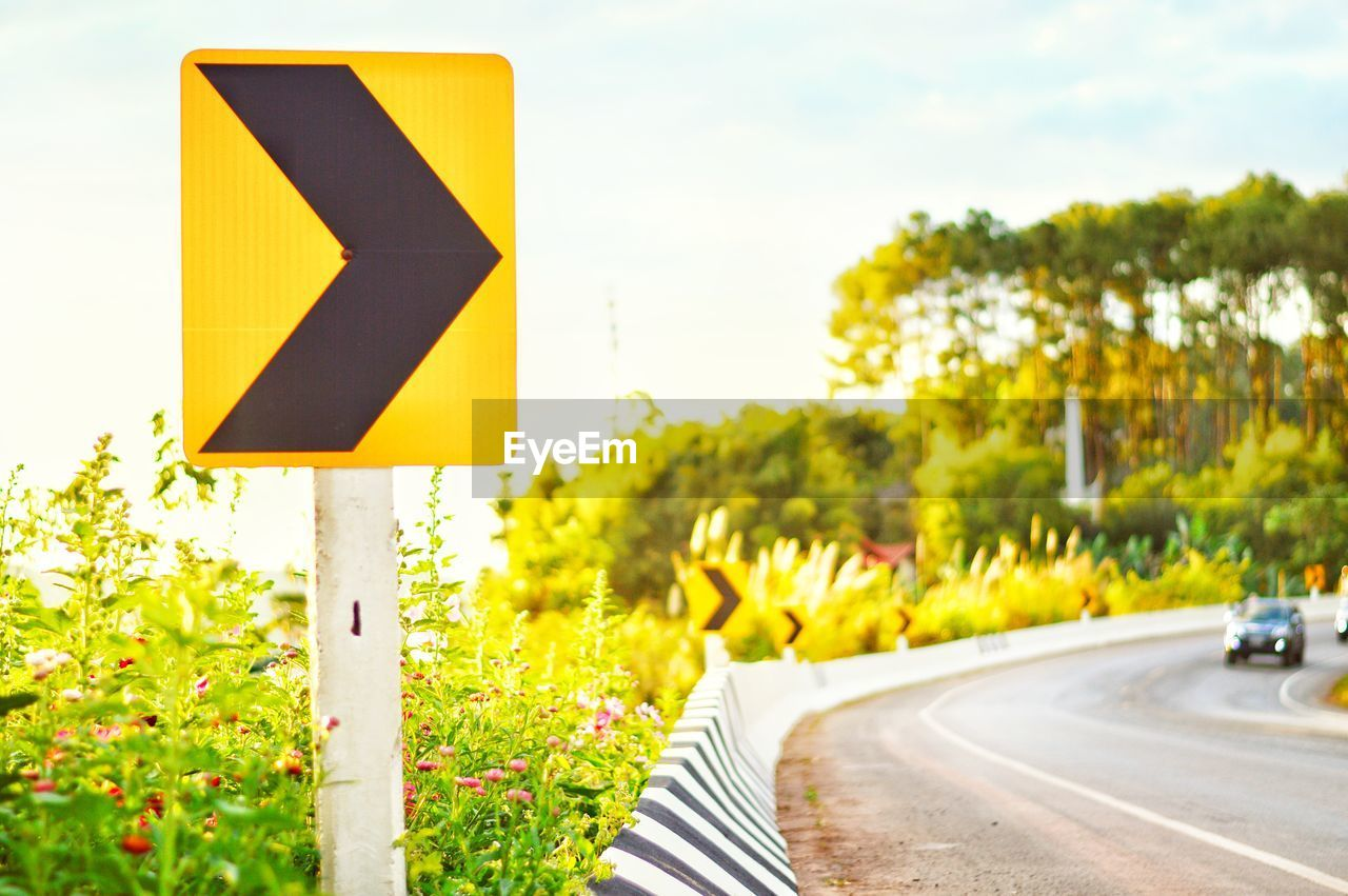 sign, road, yellow, communication, symbol, plant, transportation, road sign, guidance, direction, arrow symbol, day, no people, directional sign, nature, focus on foreground, city, street, sky, tree, outdoors