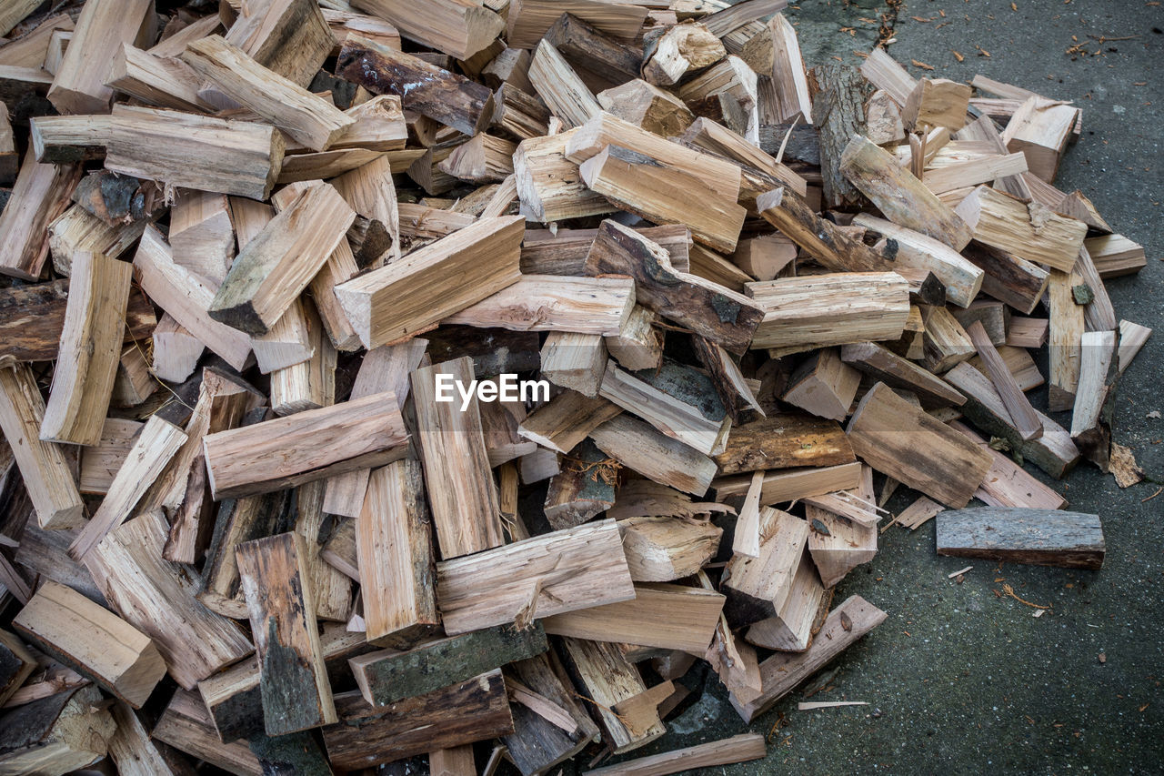 High Angle View Of Logs On Field In Forest