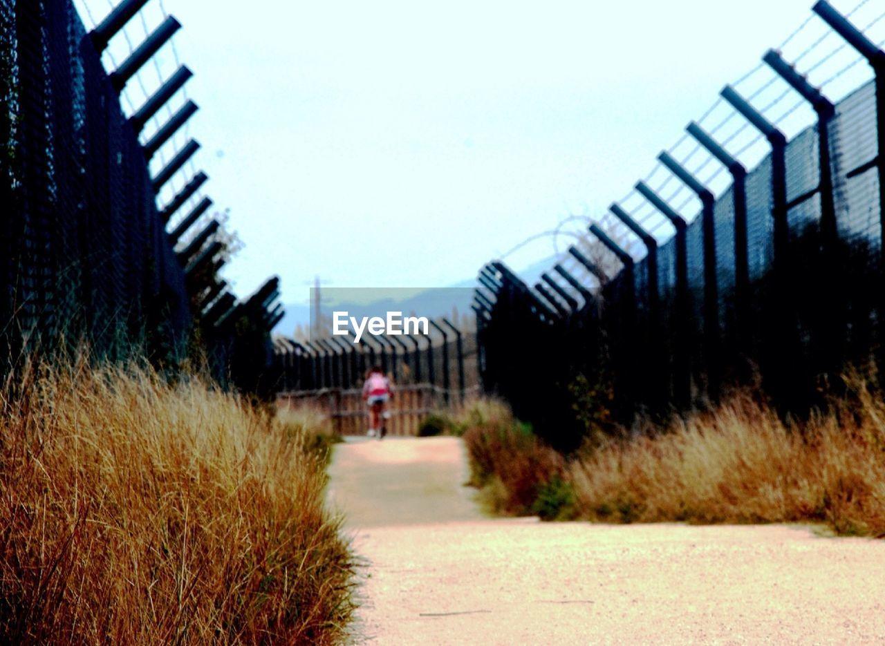 Pathway Between Fences