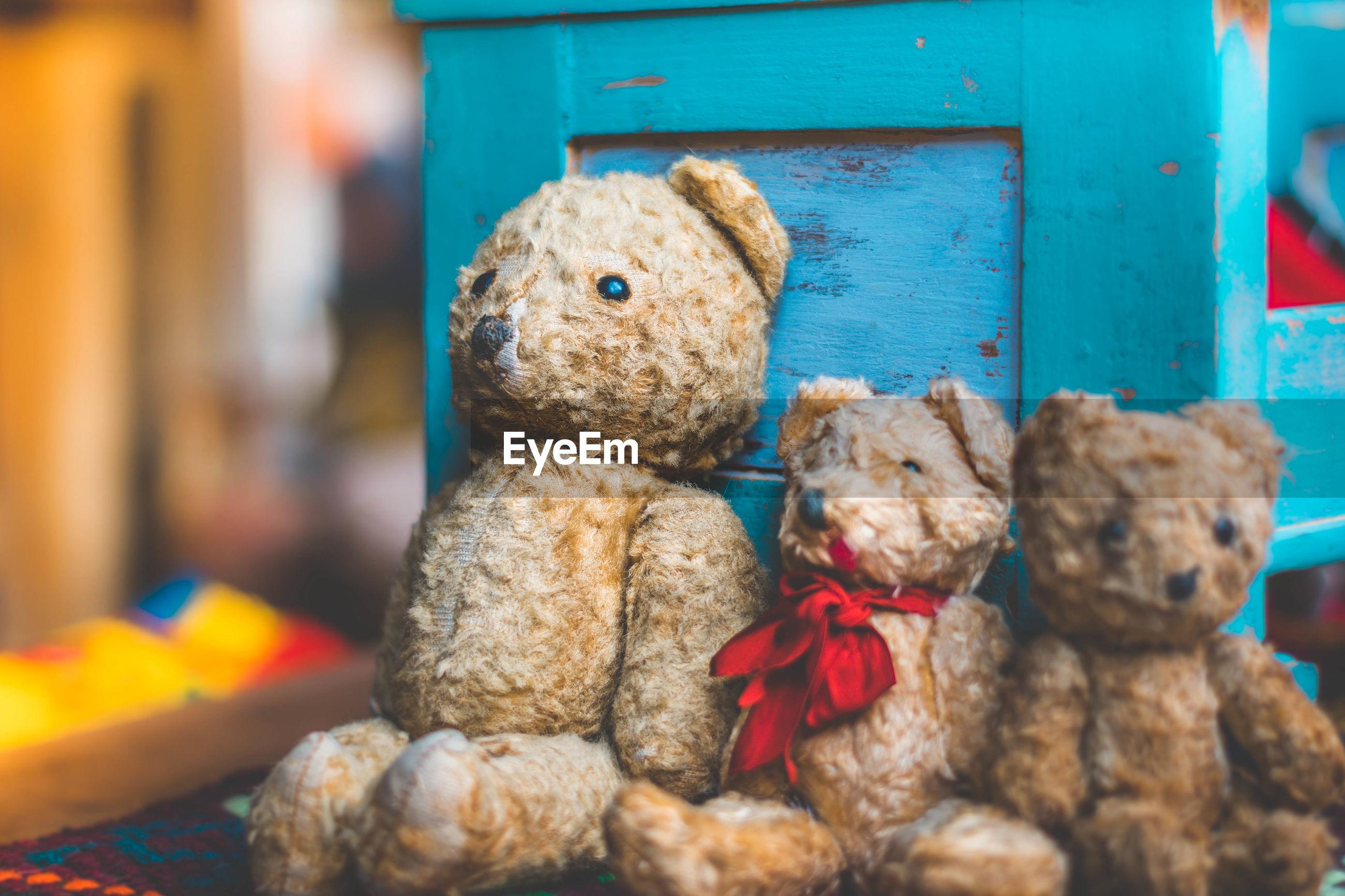 Close-up of teddy bears