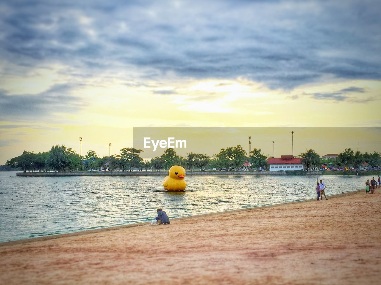 water, sky, cloud - sky, sport, sunset, tree, outdoors, competitive sport, leisure activity, day, nature, nautical vessel, real people, sea, men, city, architecture, people