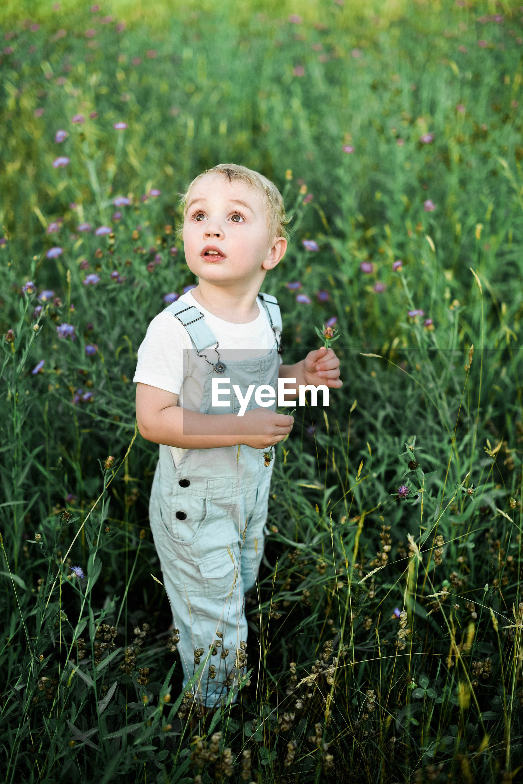 FULL LENGTH OF CUTE BOY ON GRASS