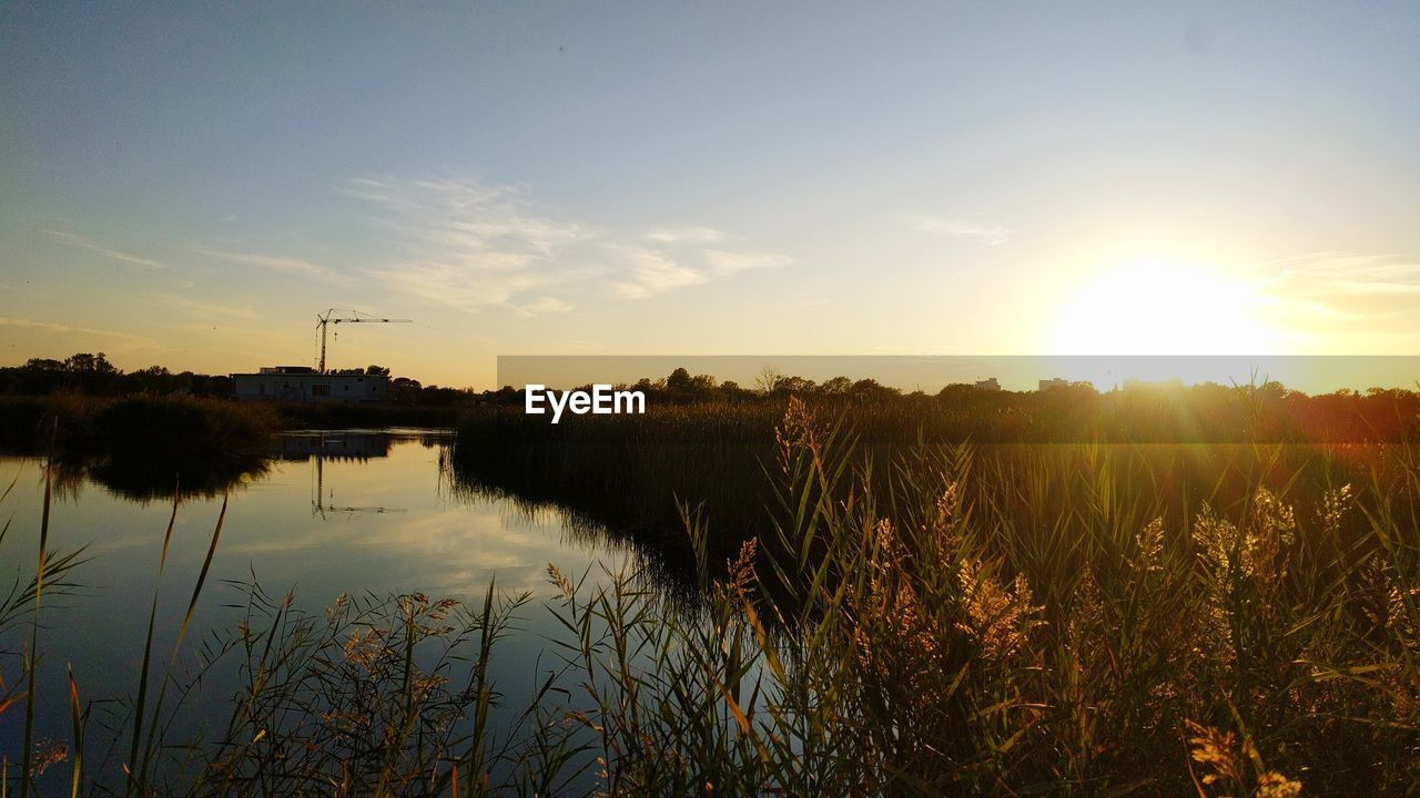 sky, sunset, plant, beauty in nature, water, scenics - nature, tranquility, nature, reflection, tranquil scene, sun, sunlight, no people, cloud - sky, growth, grass, lake, non-urban scene, landscape, outdoors, lens flare