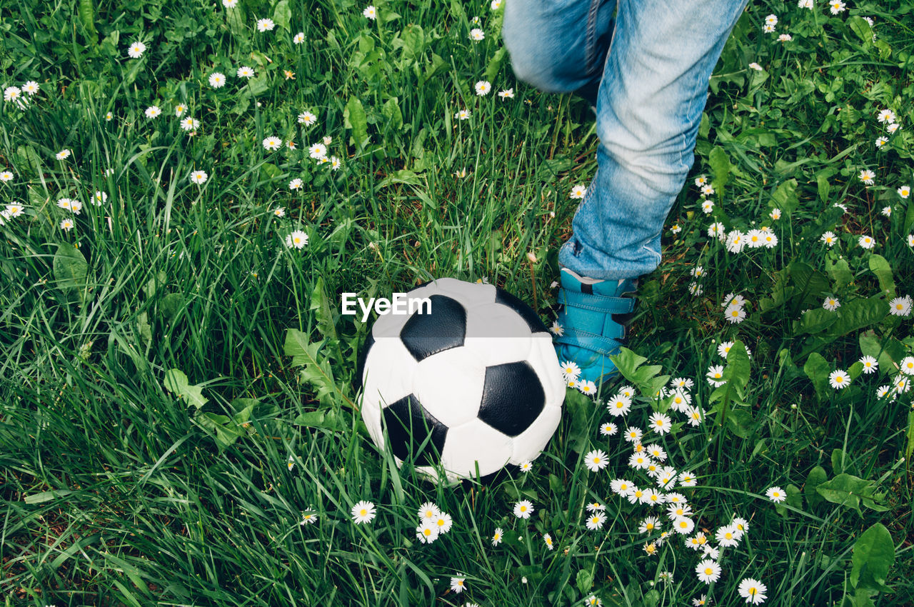 Low Section Of Boy Kicking Soccer Ball