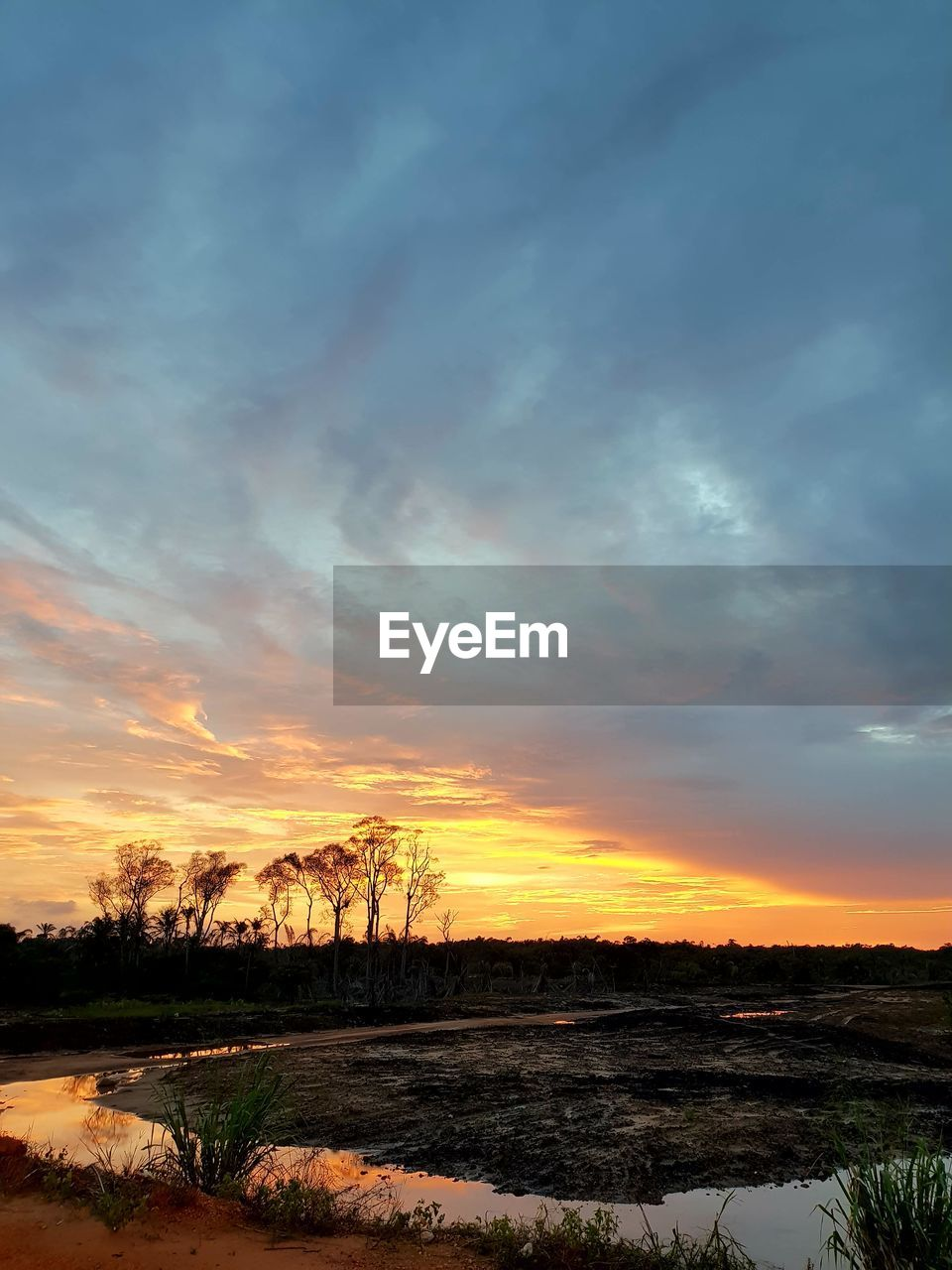 sunset, orange color, tranquil scene, scenics, sky, nature, beauty in nature, tranquility, outdoors, cloud - sky, no people, landscape, tree, water, day
