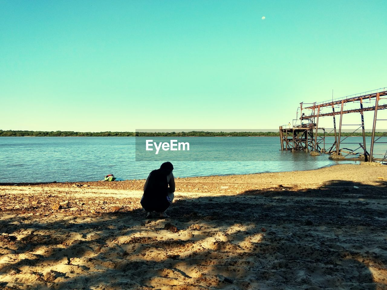water, sea, clear sky, nature, sunlight, beach, day, outdoors, one animal, animal themes, sky, sand, shadow, beauty in nature, horizon over water, built structure, no people, scenics, bird