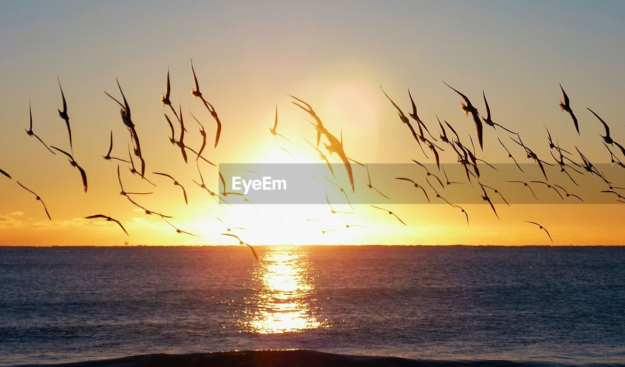 sunset, sea, beauty in nature, scenics, tranquil scene, nature, horizon over water, sun, tranquility, sky, idyllic, water, silhouette, sunlight, orange color, no people, reflection, outdoors, beach, rippled, clear sky, day
