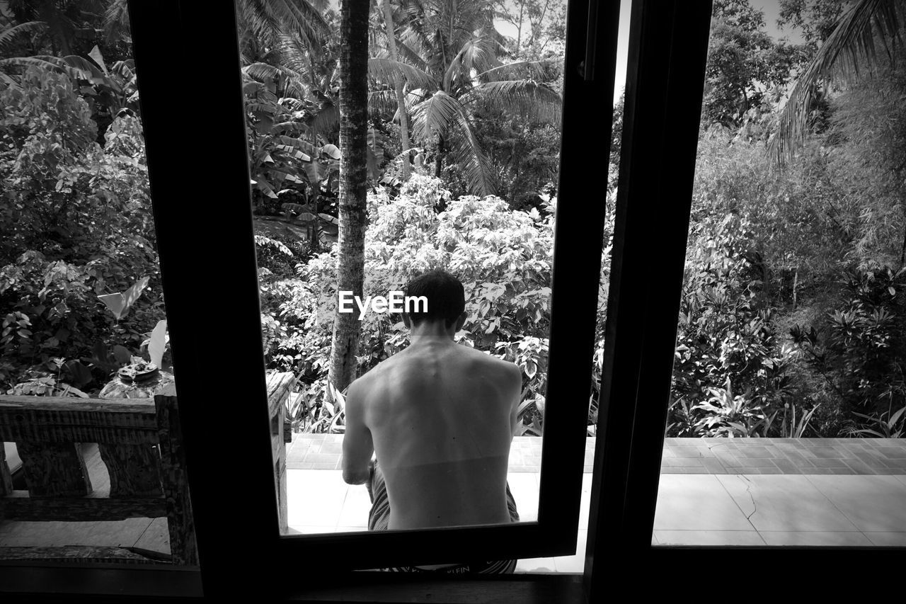 rear view, window, transparent, glass - material, tree, one person, real people, indoors, shirtless, plant, standing, lifestyles, day, leisure activity, looking through window, waist up, nature, looking, architecture