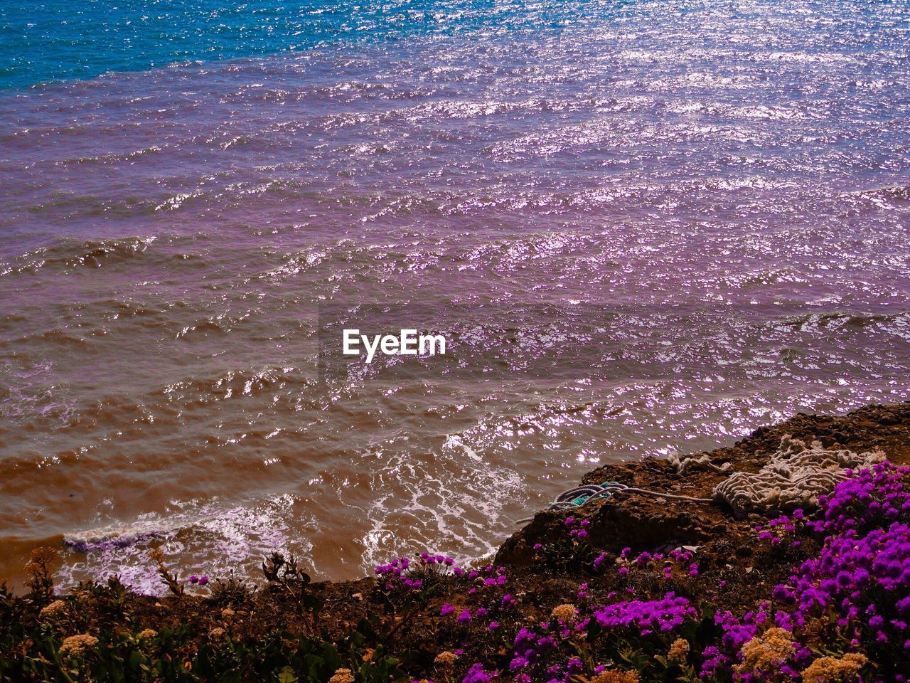 sea, water, beach, nature, shore, beauty in nature, wave, outdoors, no people, high angle view, day, scenics