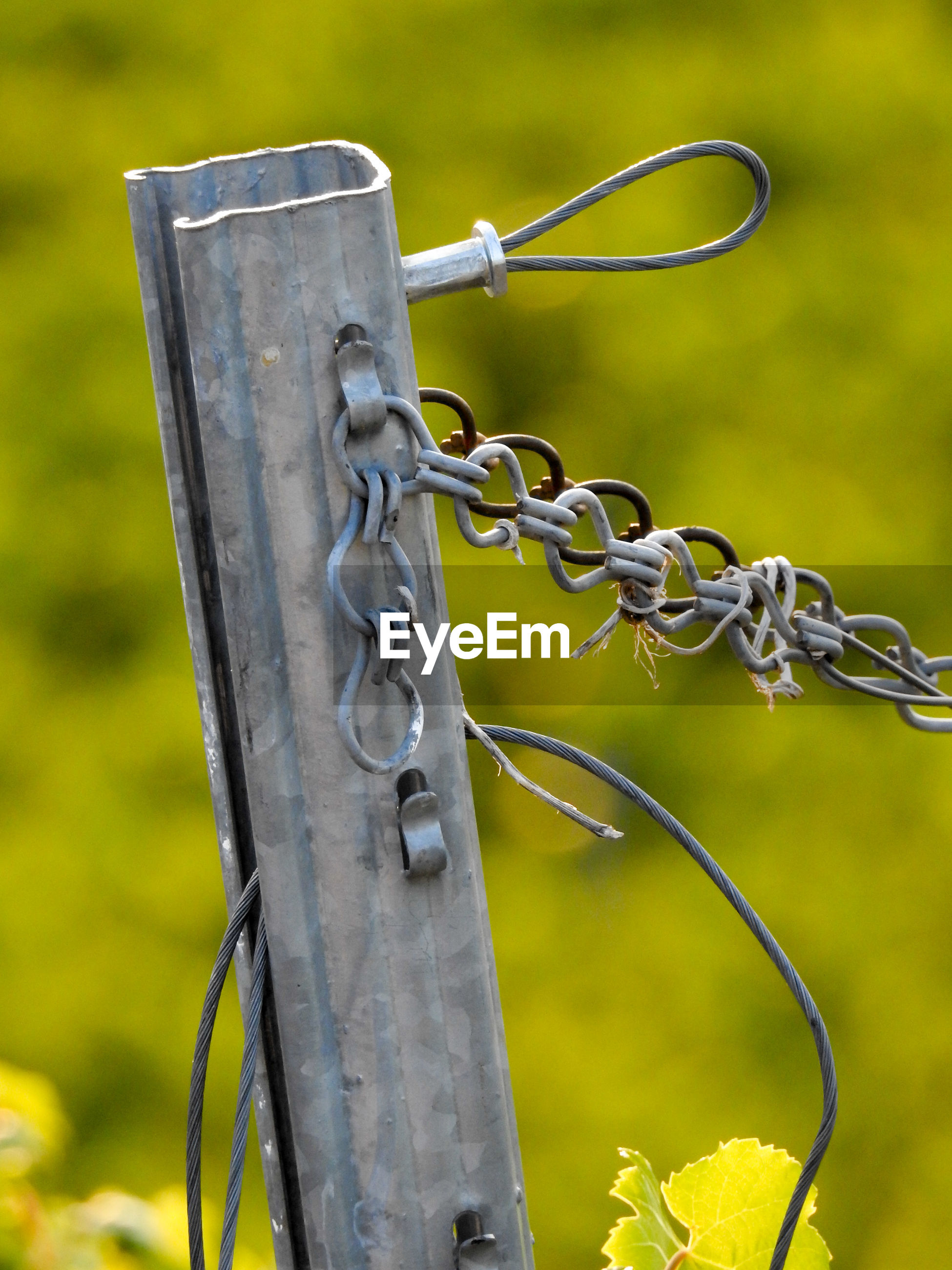 Close-up of chain on fence