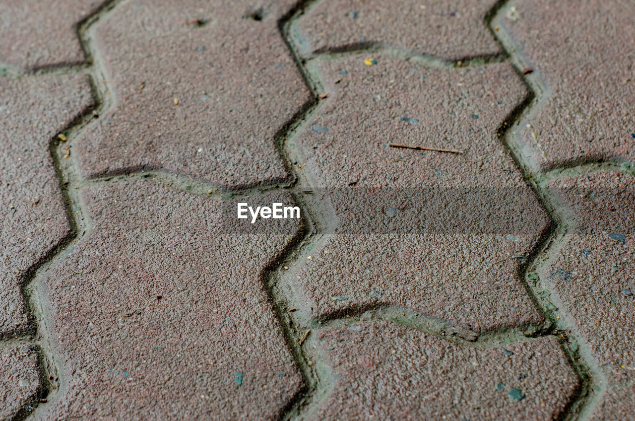 backgrounds, full frame, pattern, no people, textured, environment, day, nature, close-up, high angle view, outdoors, land, climate, arid climate, natural pattern, cracked, scenics - nature, plant, environmental issues, beauty in nature, textured effect