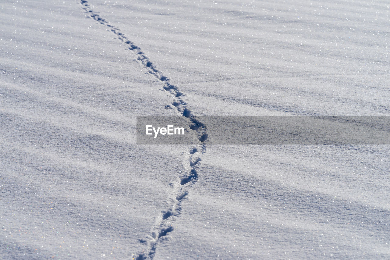 High angle view of footprints on snowy field