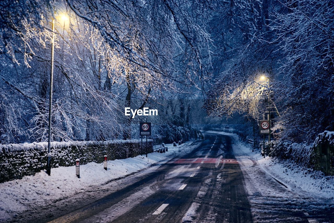 tree, snow, cold temperature, winter, plant, road, direction, the way forward, transportation, nature, illuminated, snowing, no people, diminishing perspective, beauty in nature, night, street, scenics - nature, city, outdoors, extreme weather, blizzard