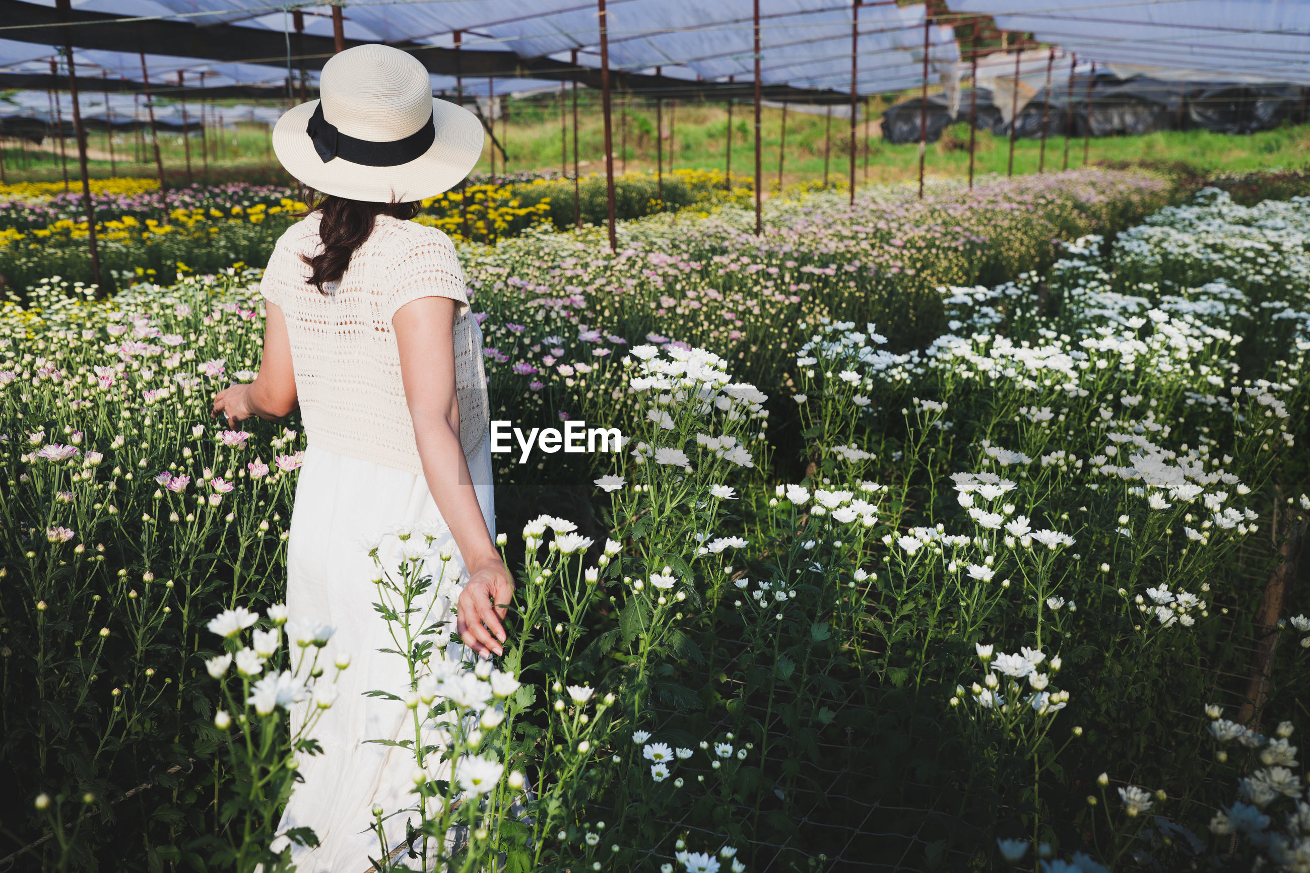 REAR VIEW OF WOMAN STANDING ON FIELD BY FLOWERING PLANTS