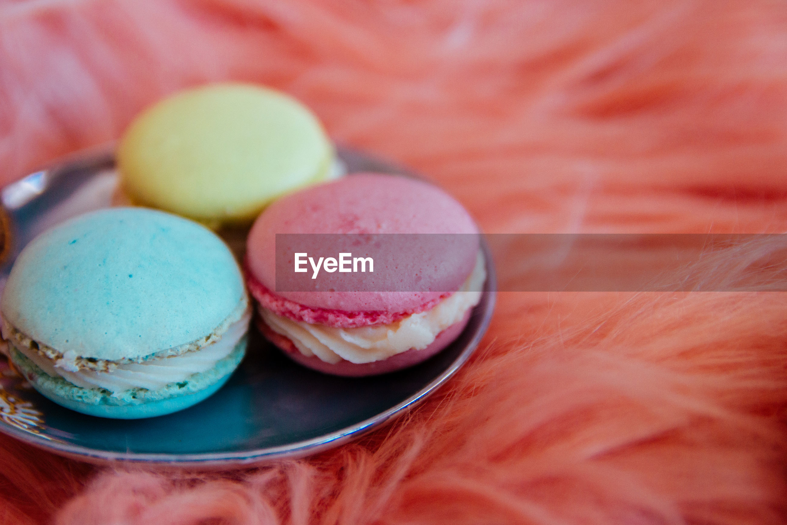 Close-up of multi colored macaroon